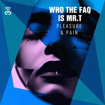 Who The FAQ is Mr T. - Pleasure & Pain
